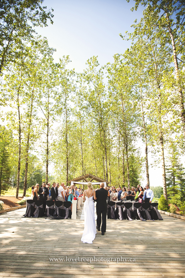 Redwoods wedding ceremony | image by Langley wedding photographer www.lovetreephotography.ca