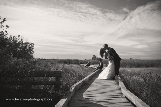 where to take wedding pictures in Ladner BC; image by vancouver wedding photographers www.lovetreephotography.ca