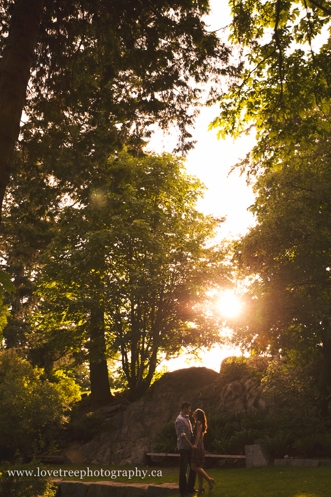 love the sun in the trees. vancouver engagement session by burnaby wedding photographers www.lovetreephotography.ca