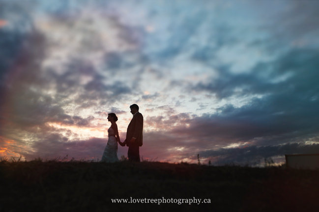 artistic wedding portraits in Vancouver by www.lovetreephotography.ca
